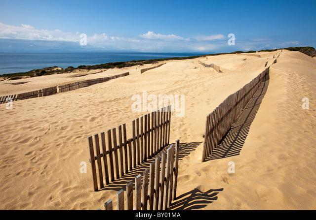 Dunas Playa Punta Paloma Tarifa Cadiz Andalusien España Dünen Strand Punta Paloma Spanien Andalusien Tarifa Stockbild