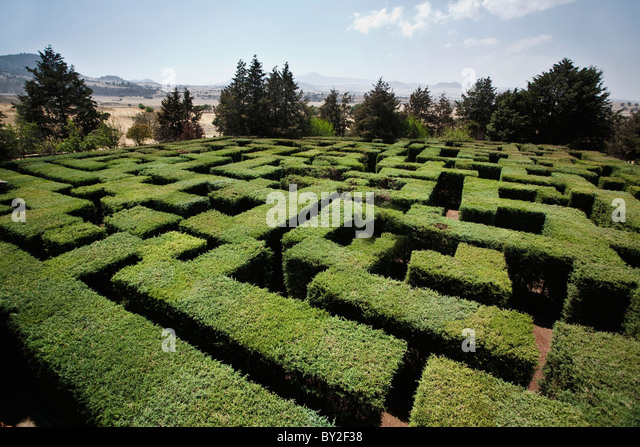 eine Pflanze Labyrinth in Hacienda San Andres, Estado de México, Mexiko. Stockbild