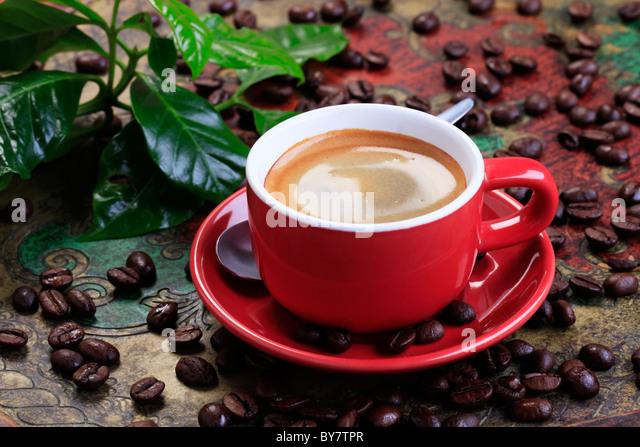 Tasse Kaffee mit glatten braunen Schaum Stockbild