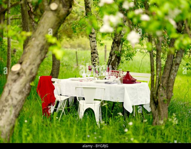Picknick-Tisch im Garten Stockbild