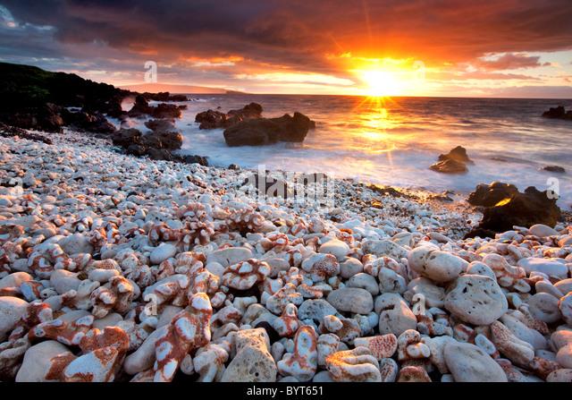 Sonnenuntergang am Strand mit Korallen. Maui, Hawaii. Stockbild