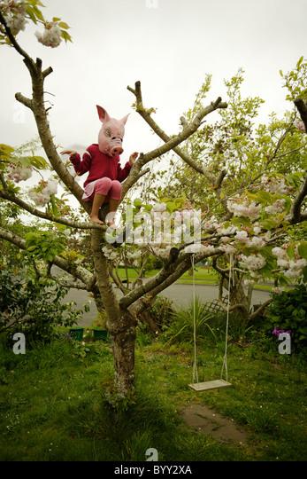 Schweine können fliegen. Mädchen in Schwein Maske mit Flügeln. - Stock-Bilder