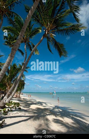 Strand von Bavaro, Dominikanische Republik Stockbild