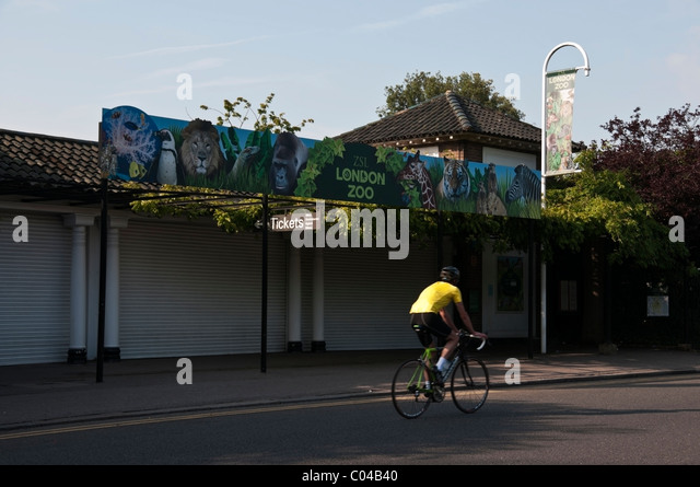 Der Londoner Zoo Zeichen, zoologischen Gärten Eingang und Biker im gelben T-shirt, Regents Park, England, Vereinigtes Stockbild
