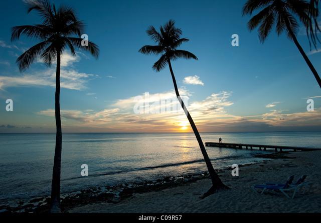 Sonnenuntergang mit Palmen und paar, Strand von Bayahibe, Dominikanische Republik Stockbild