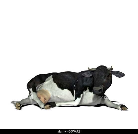Kuh-Abbildung Stockbild