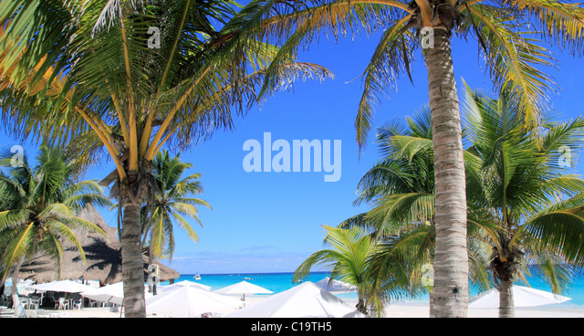 Karibikstrand tropischen weißen Sonnenschirm mit Kokosnuss-Palme Stockbild