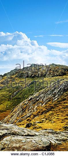 wildes terrain Stockbild