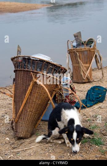 Pygmäen, Betou, Ubangi Fluß, Republik Kongo Stockbild