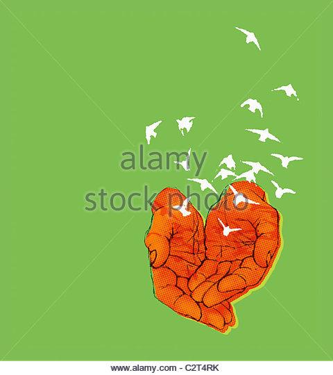 Hände, die Freigabe der Vogelschwarm Stockbild