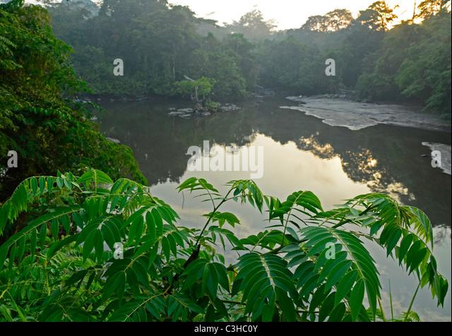 Demokratische Republik Kongo im Januar 2011. Epulu Fluss im Okapi-Reserve im Kongo-Becken/Ituri-Waldes Stockbild