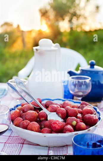 Schale mit Erdbeeren auf Picknick-Tisch Stockbild