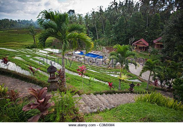 Indonesien, Insel Bali, Blimbing oder Belimbing, Kedun Resort. Stockbild