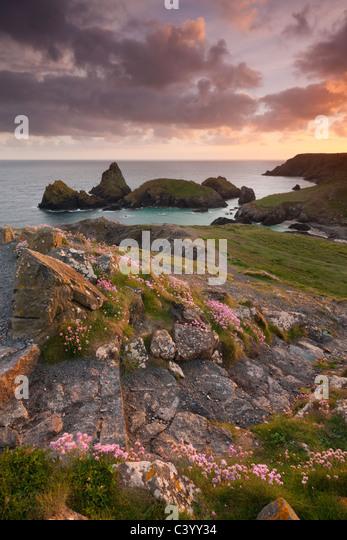 Schritte auf dem South West Coast Path oben Kynance Cove, Lizard, Cornwall, England. Frühjahr (Mai) 2011. Stockbild