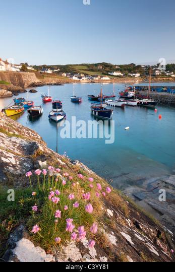 Am frühen Morgen Hafen Szene im malerischen Fischerdorf Dorf von Coverack, Süd Cornwall, England. Frühjahr - Stock-Bilder