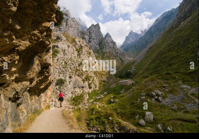 Walker auf die dramatische Fußweg in die Garganta del sorgen, in der Nähe von Kain. Picos de Europa, Asturien. Stockbild