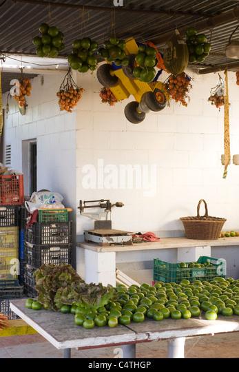 Frische Produkte im Markt Stockbild