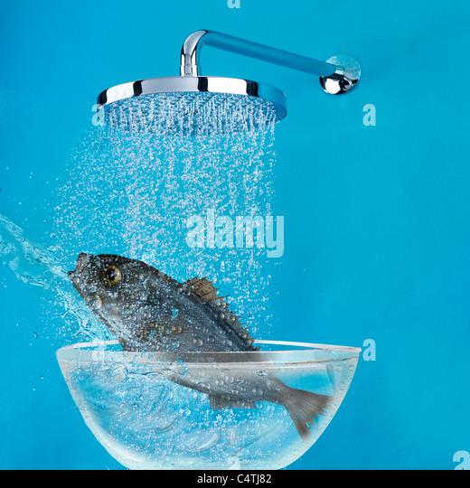 Das Fischen unter Dusche Stockbild