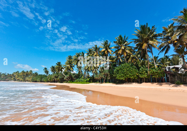 Tropisches Paradies Traumstrand. Sri Lanka Stockbild