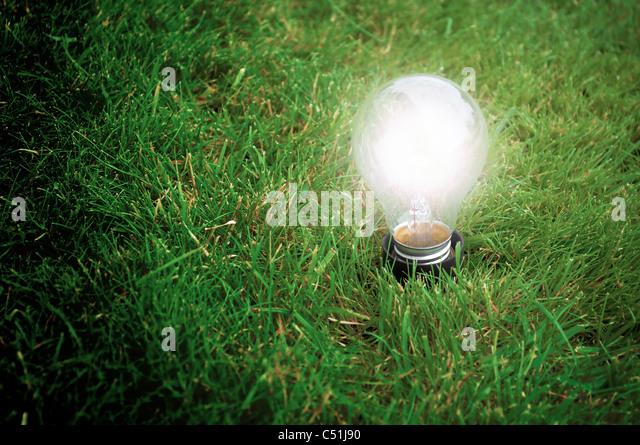 Alternative Energie-Konzept - Glühbirne leuchtet das Gras in der Nacht Stockbild