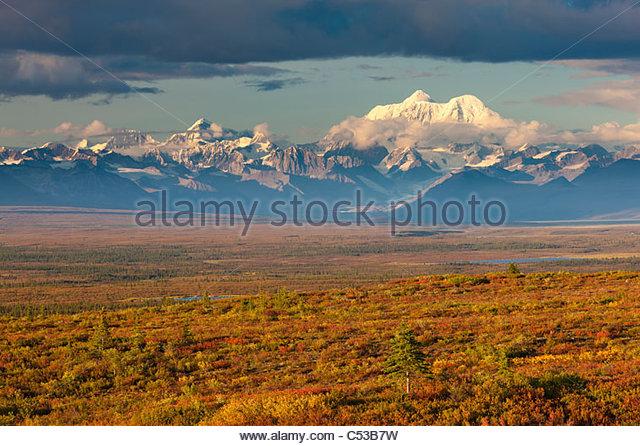 Malerische Aussicht auf Tundra und Taiga in Herbstfarben unter Mt. Hayes und Alaska Range entlang der Denali Highway, Stockbild