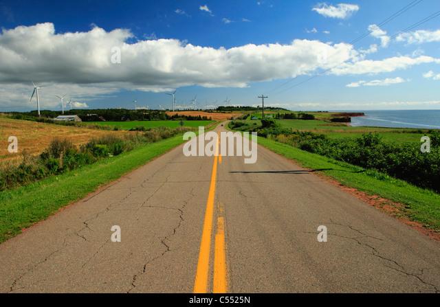 Straße, die durch ein Feld, North Cape Coastal Drive, Prince-Edward-Insel, Kanada Stockbild