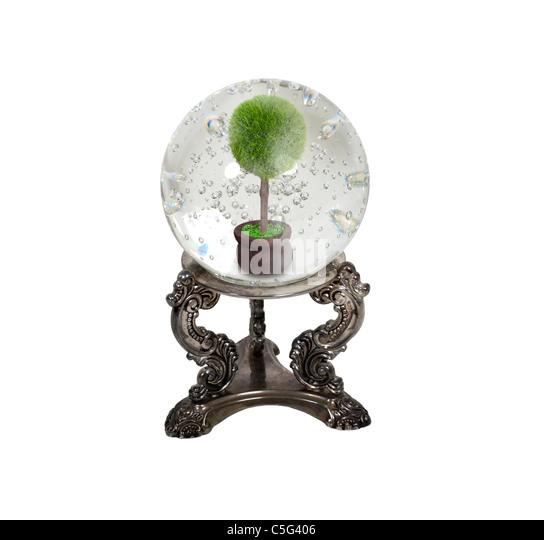 Die Zukunft der Ökologie, dargestellt durch eine Kristallkugel und Baum in einem Topf innen - Pfad enthalten Stockbild