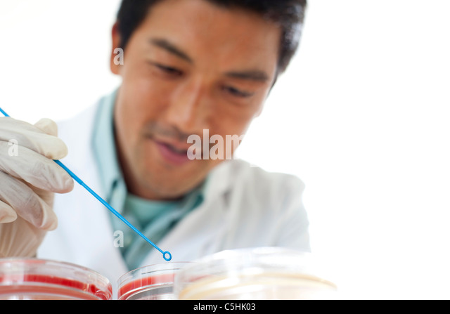 Mikrobiologie-Forschung Stockbild