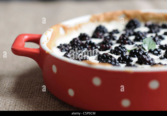 BlackBerry-tarte Stockbild