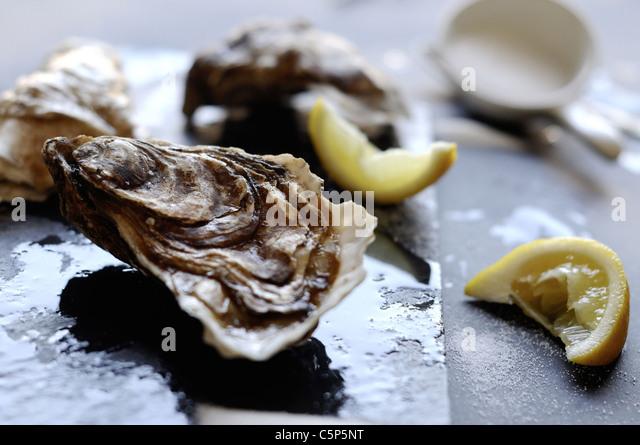 Austern mit Zitrone und Salz Stockbild