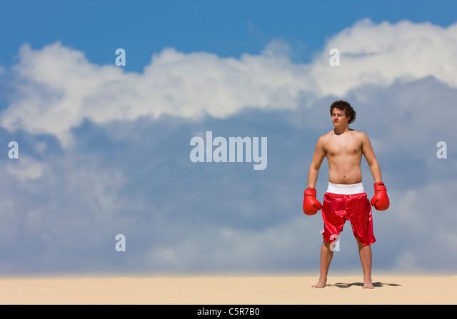Boxer stehen am Anfang der Welt. Stockbild