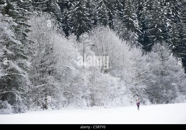 Joggen durch eine wunderschöne verschneite Winterlandschaft. Stockbild