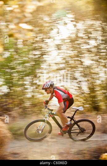Mountainbiker fahren im Wald Stockbild