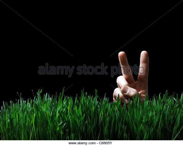Hand, so dass Friedenszeichen in Grass Stockbild