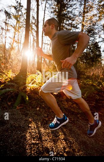 Ein Mann ist Trail-running-an einem sonnigen Morgen. Stockbild