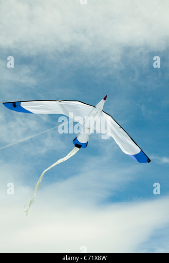 Drachenfliegen in Himmel Stockbild