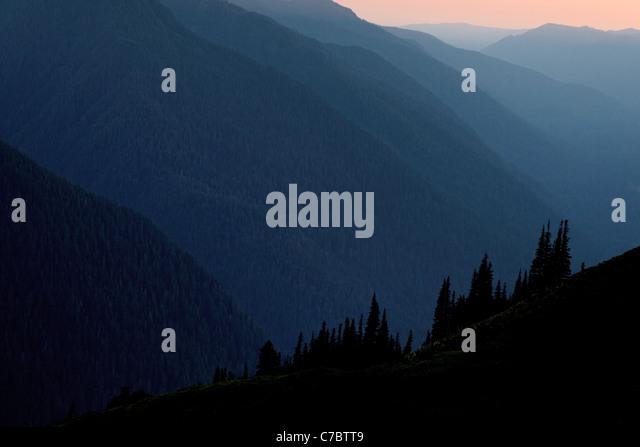 Stimmungsvolle Beleuchtung im Hoh River Valley, Olympic Nationalpark, Washington Stockbild