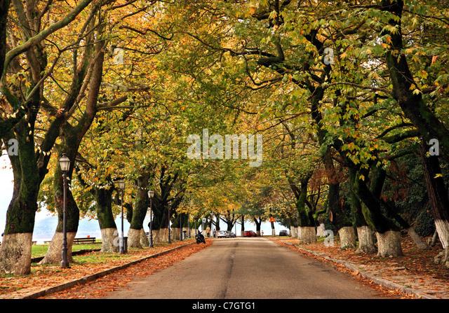"""Der malerische und romantische Uferstraße von Ioannina (oder """"Giannena"""") Stadt, Epirus, Griechenland Stockbild"""