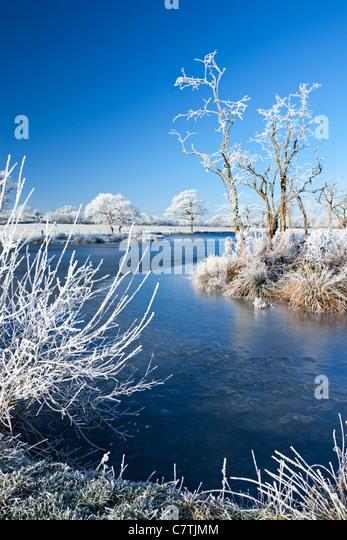 Hoar bereifte Bäume und gefrorenen Fluss im Winter, Morchard Road, Devon, England. Winter (Dezember) 2010. Stockbild