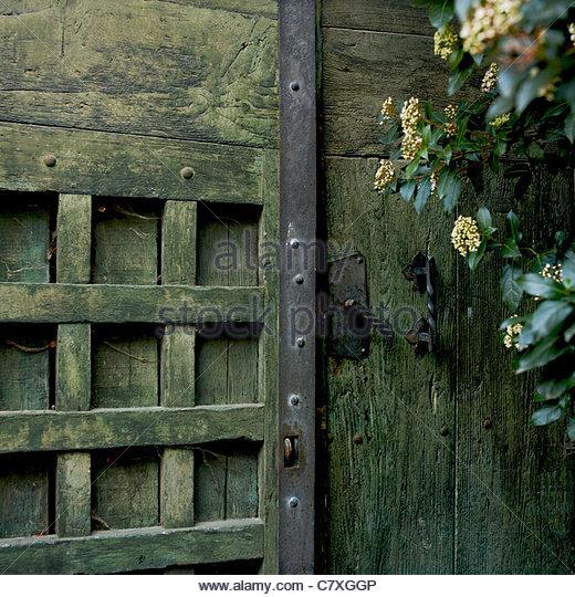 Alte Holztür und eisernen Griff mit Efeu wächst Stockbild