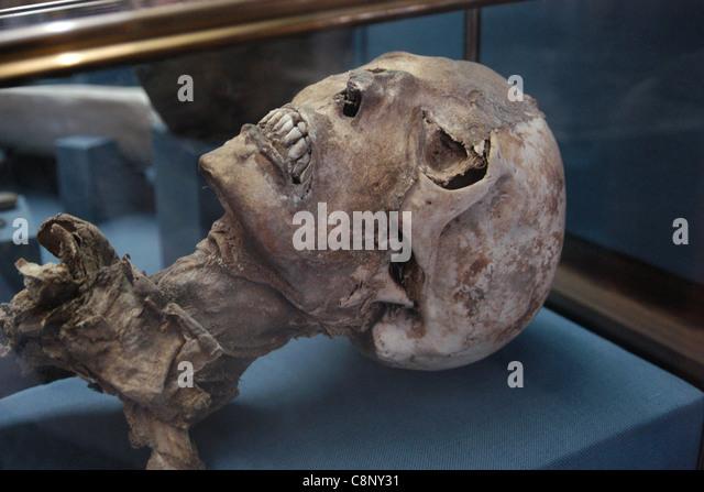 Altai-Mumie im staatlichen historischen Museum in Moskau zu sehen. Stockbild