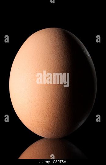Ei auf schwarzem Hintergrund Stockbild