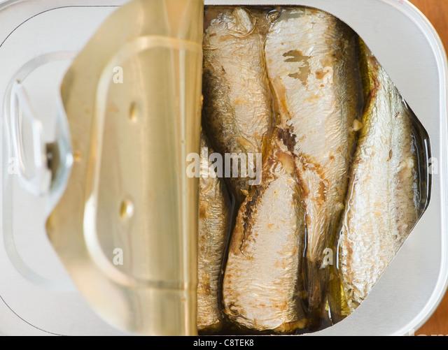 Nahaufnahme von Sardinen in Dose Stockbild