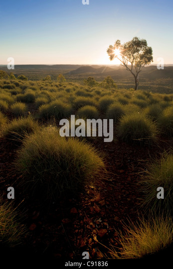 Mount Isa, Queensland Australien Stockbild