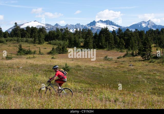Mountainbiker auf der Lost Lake Trail in der Nähe von Seward, Kenai-Halbinsel, Yunan Alaska, Sommer Stockbild