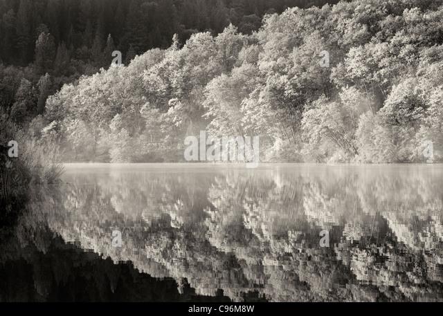 Spiegelbild im See Britton mit Herbst farbige Bäume. California Stockbild