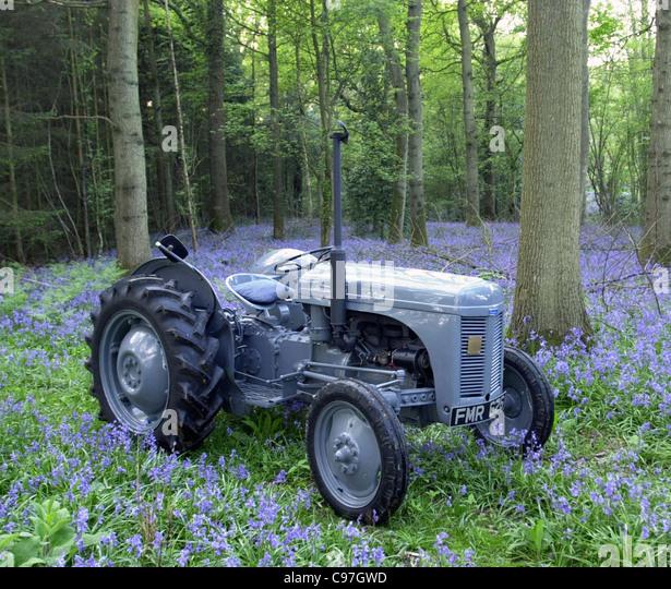 Oldtimer Traktor Ferguson TEA20 Stockbild