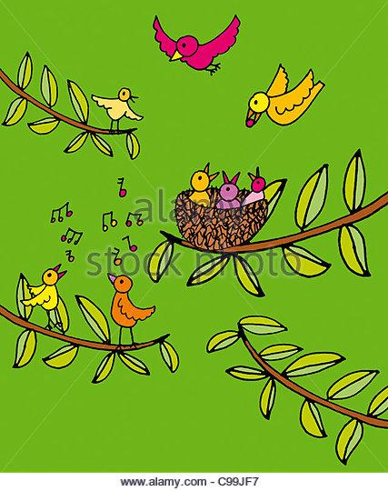 viele Vögel nisten Bird Song Frühling NESTWAERME Tier Vogel Liebe Symbolik Eiern Ei Vogelnester, die Haustiere Stockbild