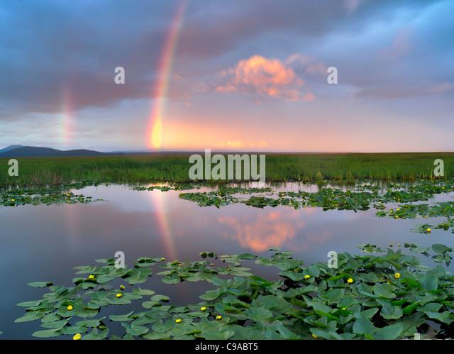 Regenbogen am Klamath Marsh National Wildlife Refuge, Oregon Stockbild
