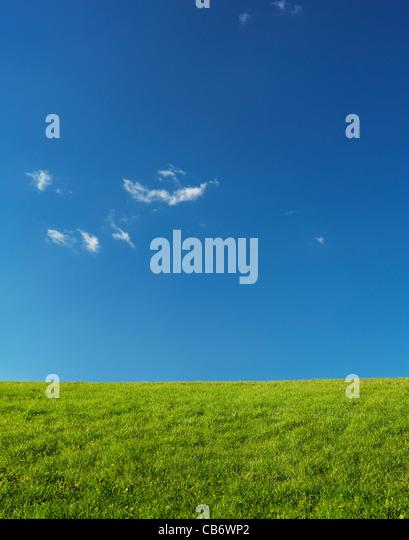Grüne Wiesen Landschaft unter blauen Himmel von Sonnenlicht beleuchtet. Natur-Kulisse-Hintergrund. - Stock-Bilder